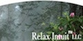 Relax Intuit LLC