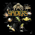 Spiders Kids T-Shirt in a Jar