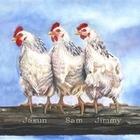 Chicken III Print