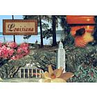 Louisiana Sites Postcard