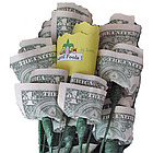 April Fool's 13-Stem Paper Money Roses Bouquet