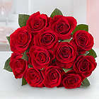 One Dozen Red Roses Bouquet