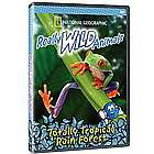 Totally Tropical Rain Forest DVD
