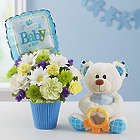 Welcome Baby Boy Lotsa Love Bouquet and Teddy Bear