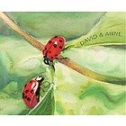Ladybugs Personalized Fine Art Print