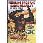 King Kong Premium Luster Print