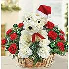 Santa Paws Flower Arrangement