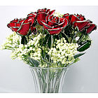 "One Dozen 11"" Red Roses Trimmed in 24kt Gold"
