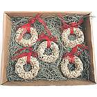 Bird Seed Christmas Wreath Ornament Gift Set