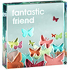Fantastic Friend Butterfly Paperweight