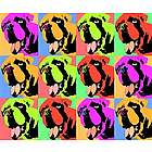 Andy Warhol Style Custom 12 Photo Panels Print