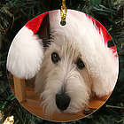 Picture Perfect Pet Photo Ornament
