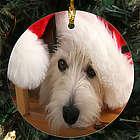 Picture Perfect Pet Photo Ornament