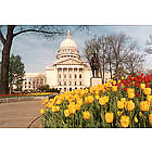 Wisconsin State Capitol in Springtime Photograph