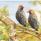 Personalized Autumn Love Birds Print