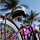 South Beach Art Deco Bike Tour for Two