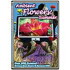 Ambient Flowers Ultimate Video Garden DVD