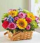 Large Sunny Garden Basket