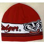 Men's Bucky Badger Knit Skully Hat
