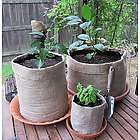 10 Gallon Burlap Plant Girdle