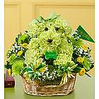 William and Mary Tribe Spirit aDOGable Bouquet