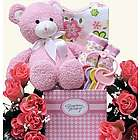 Special Delivery Girl Baby Gift Basket