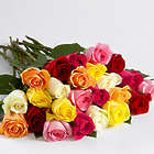 Two Dozen Rainbow Mother's Day Roses
