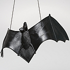 Black Hanging Bat