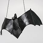 Black Hanging Bat