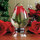 Rosebud Under Glass
