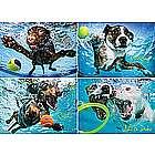 Underwater Dogs 2 Puzzle