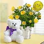 Sending You Sweet Smiles Rose Plant and Bear
