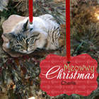 Custom Cat Photo Ornament