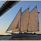 Sunset Schooner Sailing for Two in New York