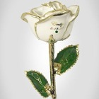 Birthstone Gold Trimmed Rose