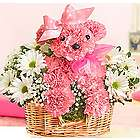 Princess Paws Pink Carnation Floral Arrangement