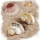 Personalized Turban Seashells