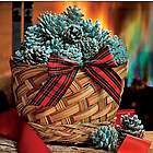 Fireplace Color-Changing Cones in 1 Pound Basket