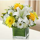 Yellow and White Healing Tears Bouquet