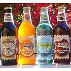 Blumer's Premium Soda -16 Bottles