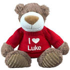 Embroidered 12 Inch I Love You Teddy Bear