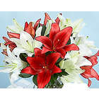 Deluxe Holiday Lilies with Vase