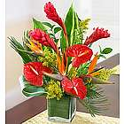 Dee's Tropical Paradise Floral Arrangement