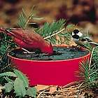 Solar Sipper Bird Bowl with Bracket