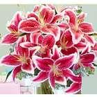 Deluxe Fragrant Birthday Stargazer Lilies Bouquet