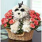 Rock Star Dog Flower Arrangement