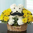 Mustache Dog Flower Arrangement