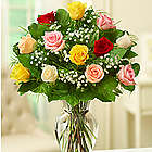 One Dozen Rose Elegance Premium Long Stem Assorted Roses