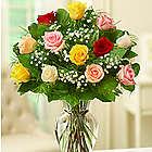 One Dozen Rose Elegance Premium Long Stem Assorted Roses
