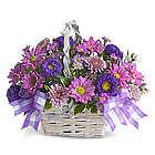 Daisy Daydreams Flowers Basket